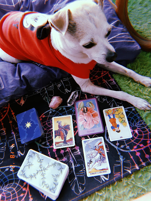 WEEKLY TAROT READING FOR YOUR ZODIAC SIGNS | APRIL 19 - 25, 2021