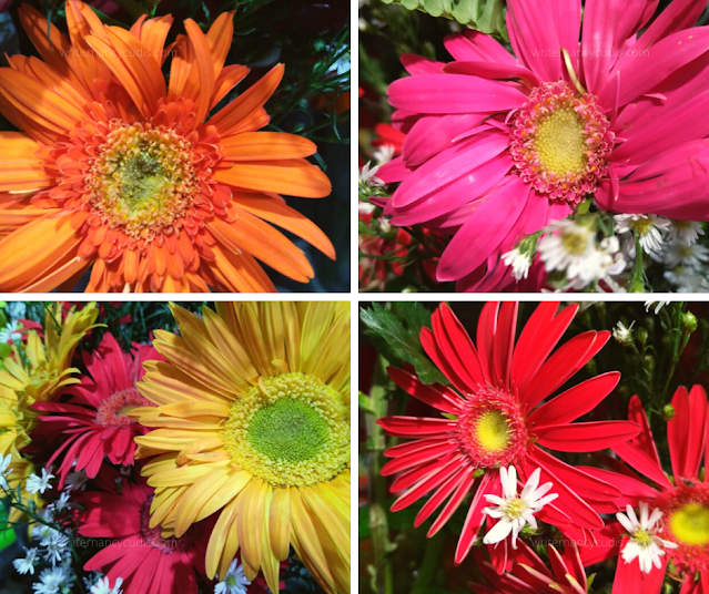 mental health flowers self-care covid-19 cebu home quarantine protocols