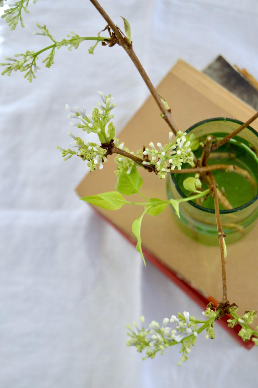 oksien-kukittaminen-talvella