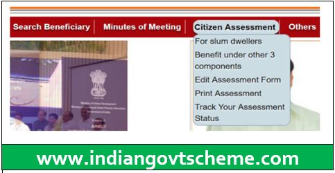Citizen Assessment