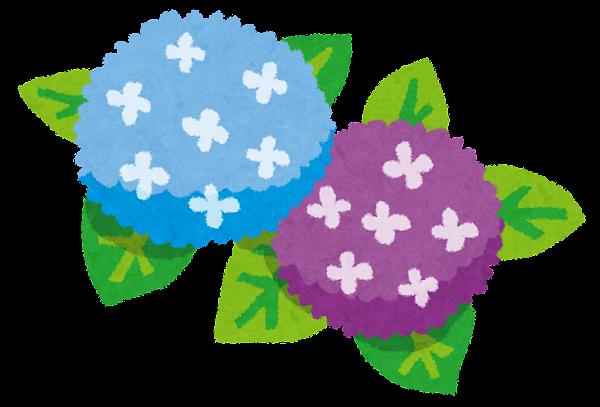 梅雨のイラスト紫陽花 かわいいフリー素材集 いらすとや