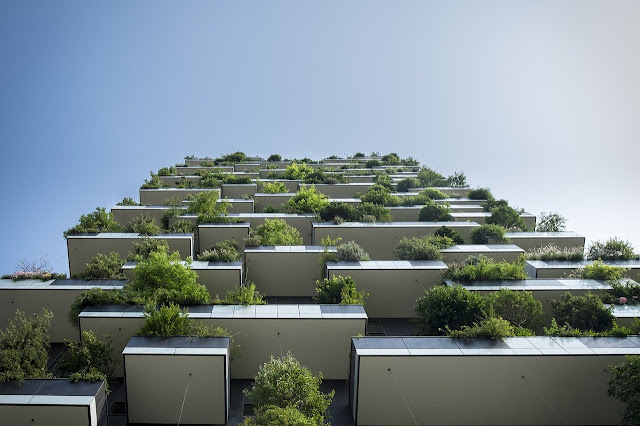 Green Buildings Are the Wave of New Commercial Building and Renovations save for Money