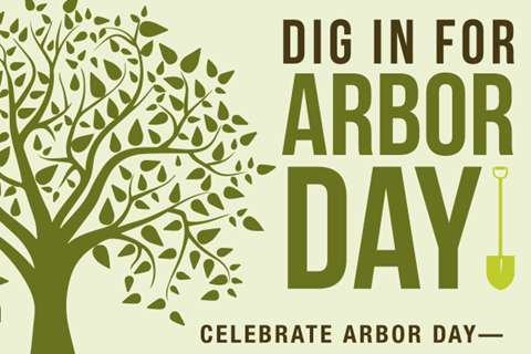 National Arbor Day Wishes for Instagram