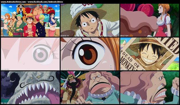 One Piece 797