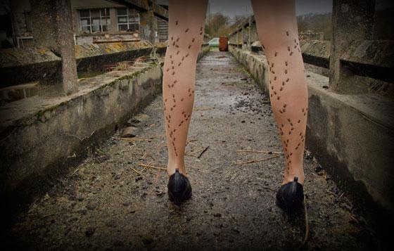 Intensa na direita dor inteira perna