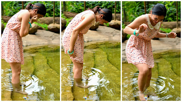 My girlfriend trying to resist that tickling feeling in the Dr Fish Pool hahaha Garra Rufa Dr Fish Pool @ The Banjaran Hotsprings Retreat, Ipoh