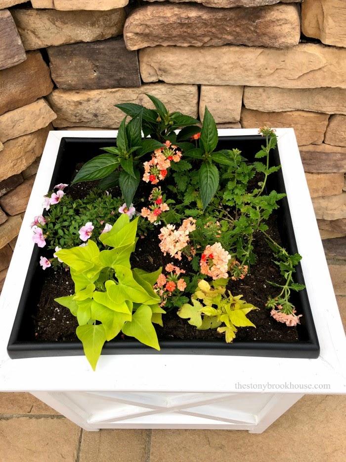 Easy Lush Flower Planters