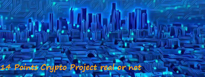 14 Points Crypto Project real or not