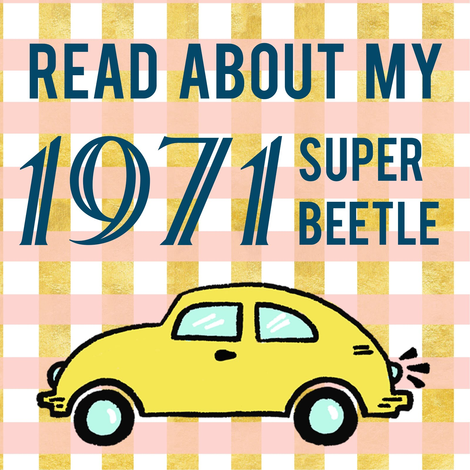 Check Out My Convertible Bug!