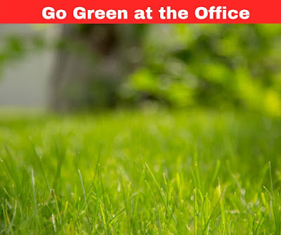 The most effective method to Go Green at the Office