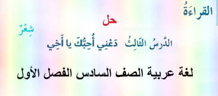 حل درس دعنى أحبك يا أخى مادة اللغة العربية للصف السادس الفصل الدراسى الأول 2020/2019