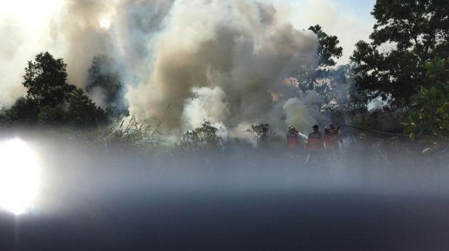 Fenomena Terbakarnya Lahan di Ogan Ilir, Warga: Sudah Biasa, Memang Langganan Setiap Tahun Ini