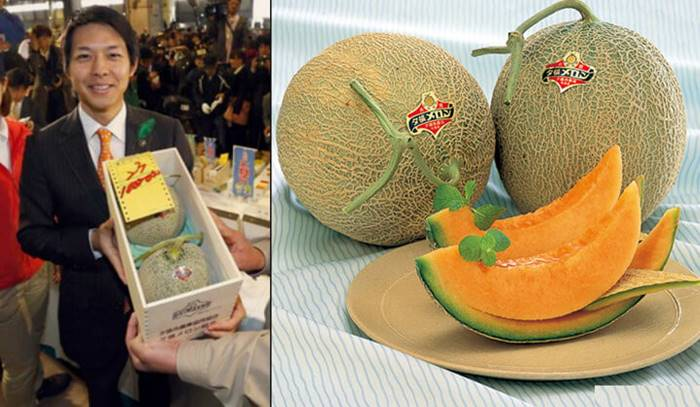 And here are the promised melons - champions in the fruit world. In 2008, a pair of such holes went off for $ 23,500. It is not surprising that this fruit is considered a status gift, which is not a shame to hand over to an expensive business partner.