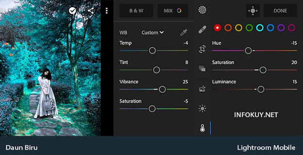 COLOR & MIX - Rumus Lightroom Daun Biru