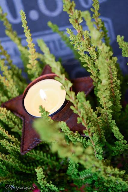 talvi asetelma calluna lyhty joulu asetelma piha pihasisustaminen havu kuisti terassi ovensuu