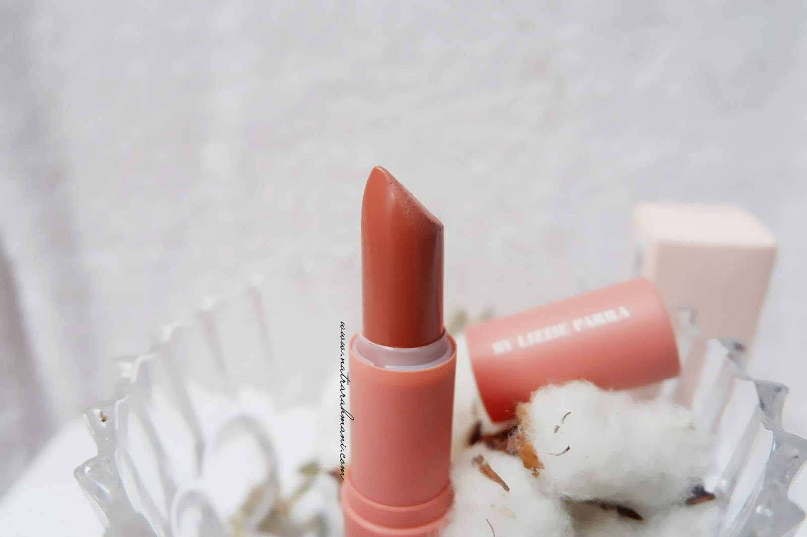 review-lip-bullet-blp-beauty-shade-pavlova