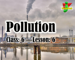 Pollution | Class 6 | Lesson 6 | English | Questions And Answers | SCERT