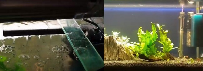 Step 4: Filter is tested inside aquarium