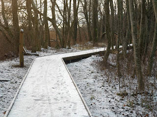 Wooden walkway covered in footprinted snow in a forest.