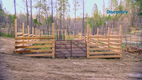 全新的蔬果園面積有18乘6公尺,柵欄高度2.4公尺,規模比火災前更壯觀