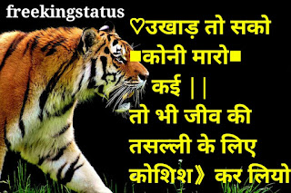 new fb status in hindi,best fb attitude status in hindi