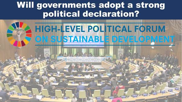 Governments must adopt a strong political declaration that the global crisis mandates