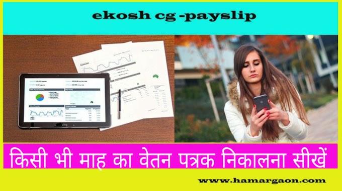 ekosh payslip online cg. सैलरी स्लिप/वेतन पर्ची ऑनलाइन प्राप्त करें मिनटों में-छत्तीसगढ़