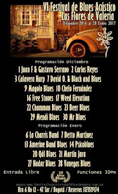 Festival de Blues Acústico