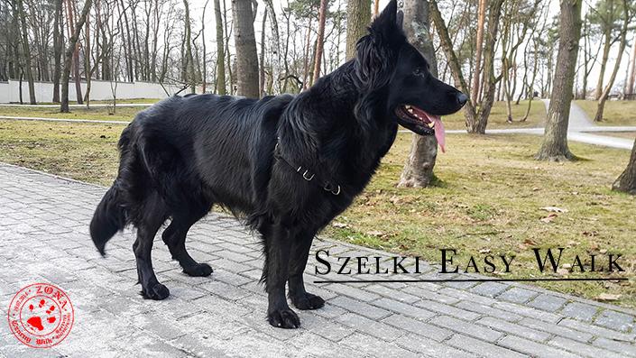 http://www.zonaczarnywilk.pl/2018/02/szelki-easy-walk.html