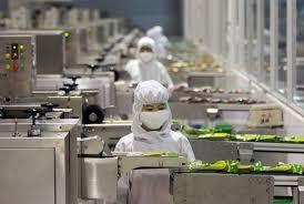 Gıda Teknolojisi nedir