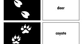 image relating to Printable Animal Tracks named Relentlessly Pleasurable, Deceptively Instructive: Animal Tunes