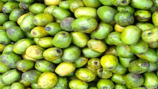 Lapsi fruit images wallpaper