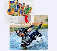 Concorso Vitakraft Nuotando vinci gratis prodotti per cani