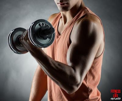 متي تتمرن لزيادة حجم العضلات ؟