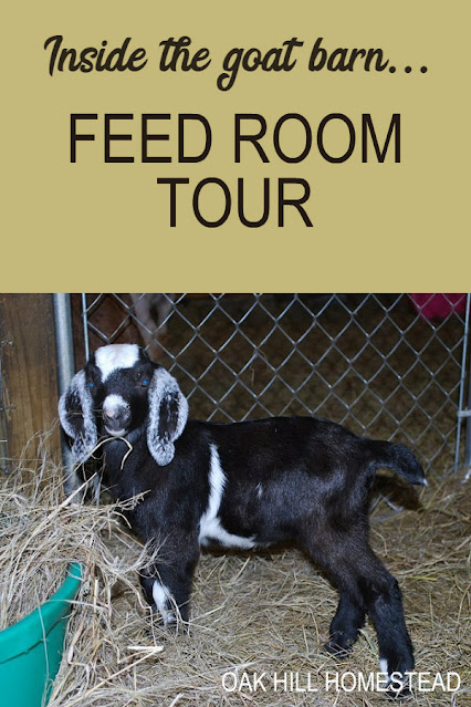 Come take a tour of the feed room in my goat barn.