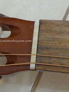 cara memasang nut pada head gitar
