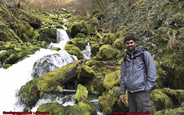 Washington Falls Creek Falls Hike