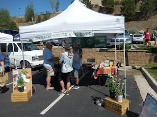 Master Gardener Activities Farmers Market