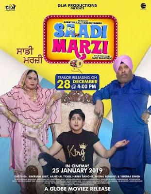 Saadi Marzi 2019 Punjabi 720p WEB-DL 900mb