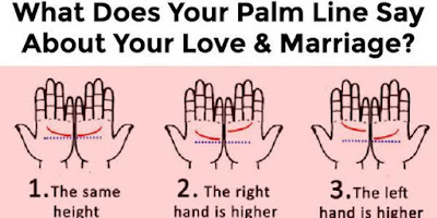 2-Lines-On-Your-Palm-Match-Up