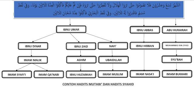 Contoh Hadits Mutabi' dan Hadits Syahid