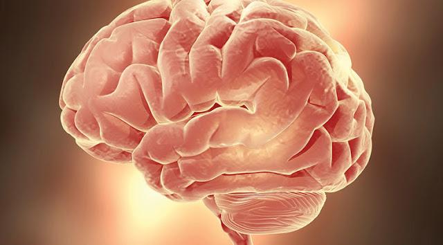 كيف تدير دماغك لتحقيق التغيير