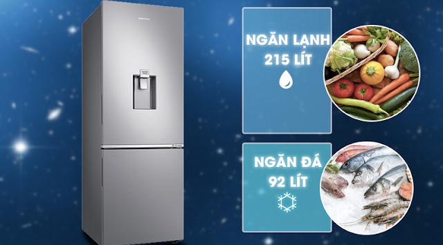 Tủ lạnh hai cửa Ngăn Đông Dưới 307L (RB30N4170S8/SV)