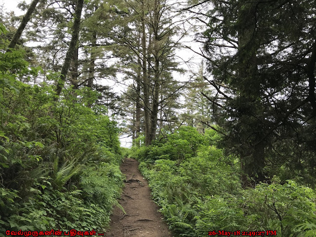 Devils Cauldron Trail