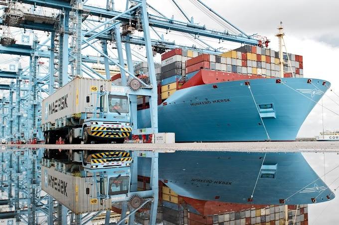 Bananos exportados por Maersk Line son monitoreados en tiempo real