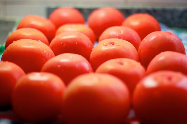 Primer plano de tomates maduros