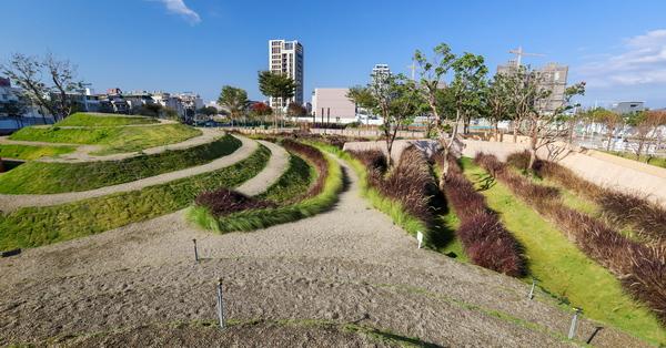 台中惠宇GOOD基地綠美化,竹林、狼尾草、雙峰漩渦約會好去處