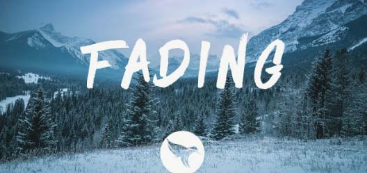 FADING SONG  LYRICS - SHALLOU