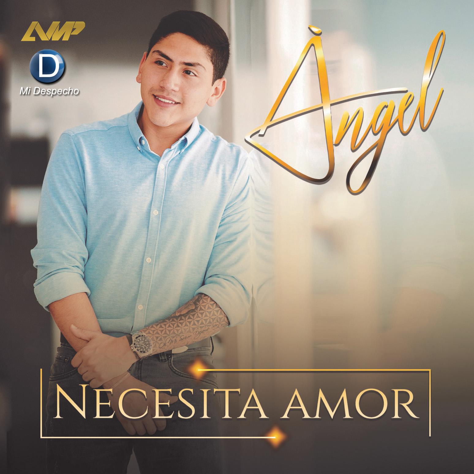 Angel Necesita Amor Frontal