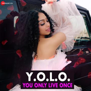 Y.O.L.O. You Only Live Once - Ginita Sunaina